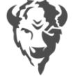 Bison Technologies  logo